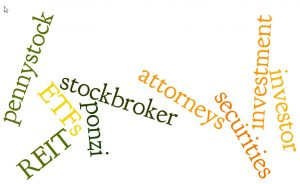 investor rights lawyers